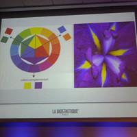 biosthetique-colore03